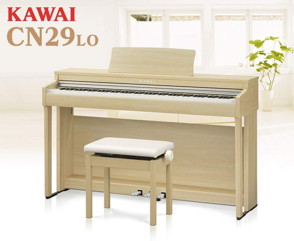 Cn29 カワイ