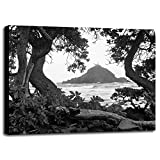 Long Hanna Drive, Maui, Hawaii 00 Framed Print 28.73''x36.00'' by Monte Nagler in a Canvas Stretched in Black Frame