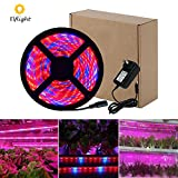 Elflight LED Plant Grow Strip Light(Power Adapter Included),5050 Waterproof Full Spectrum Red Blue 4:1 Growing Lamp Aquarium Greenhouse Hydroponic Pant Garden Flowers (2M/6.56ft)