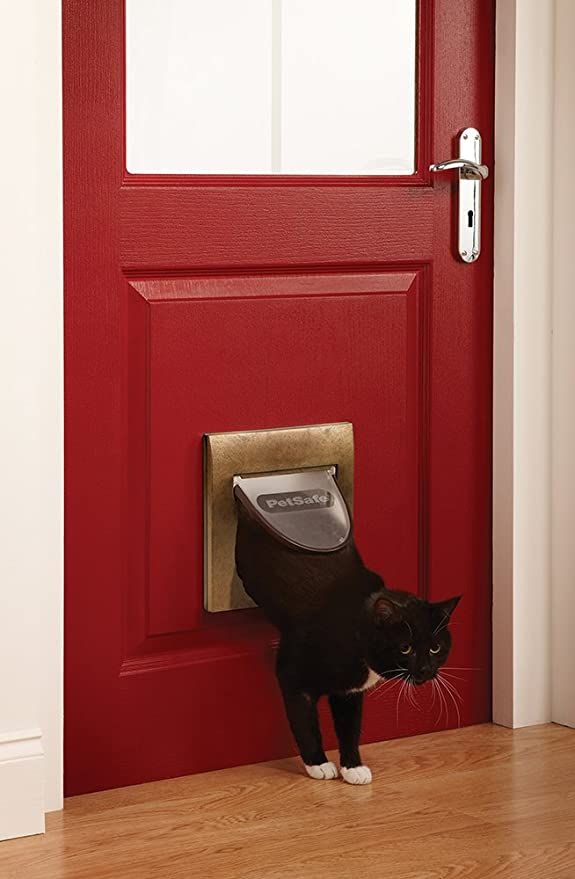 Amazon.com : PetSafe Staywell, Magnetic Classic Cat Flap, Exclusive Entry, 4 Way Locking : Pet Supplies