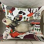 Margelo Pet Cage Hammock, Cat Ferret Hammock Bed for Bunny/Rabbit/Rat/Small Animals 10