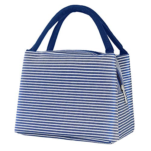 CosyVie Lunch Bags Tote Bag for Women Insulated Lunch Organizer Bag Lunch Holder for Men/Kids/Girls/Boys (Blue White Stripes)