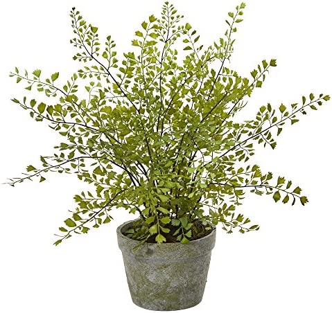 Nearly Natural Maiden Hair Artificial Plant in Planter
