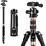 "TYCKA Rangers 56"" Compact Travel Tripod, Lightweight Aluminum Camera Tripod for DSLR Camera with 360° Panorama Ball Head and"