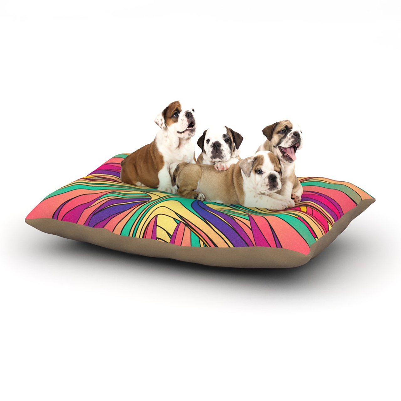 Large 30\ Kess InHouse Danny Ivan Veins  Rainbow Abstract Dog Bed, 30 by 40-Inch