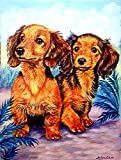 Caroline's Treasures 7022CHF Long Hair Red Dachshund Flag Canvas, Large, Multicolor