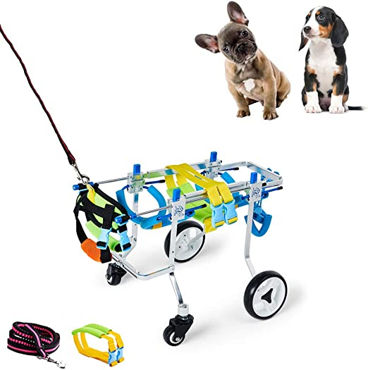 Carriers & Travel Products Dogs gaixample.org Large Dog Support ...