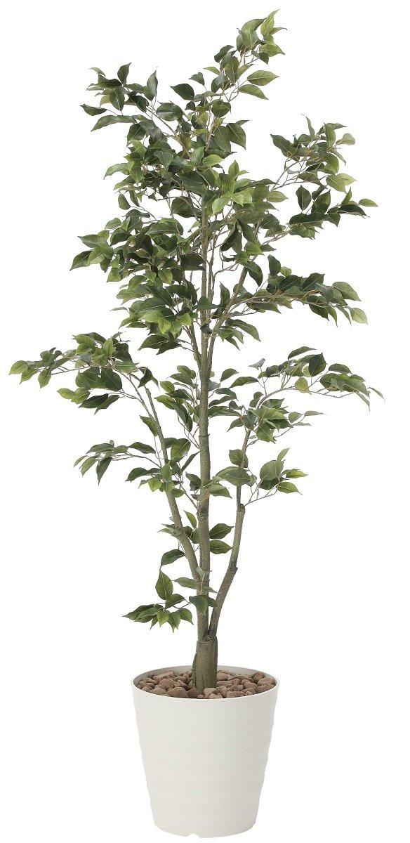 造花 観葉植物 「フィカスツリー 180cm」 光触媒(空気清浄) インテリアグリーン 鉢植え B07DK5YSXT