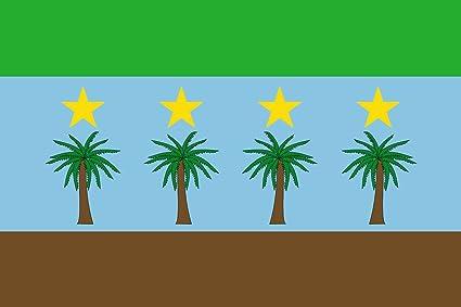 magFlags Bandera Large Municipio de Salazar de Las Palmas; en Norte de Santander | bandera