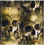 3dRose db_100285_1 Skulls, Chapel of Bones, Evora, Portugal-Drawing Book, 8 by 8-Inch