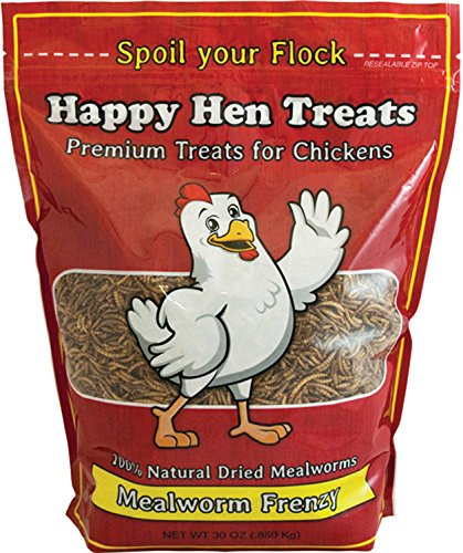 HAPPY HEN TREATS 17003 30OZ Mealworm Frenzy