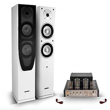 2 altavoces de pie HIFI Home Cinema/2 x 120 W + Amplificador dtéréo de