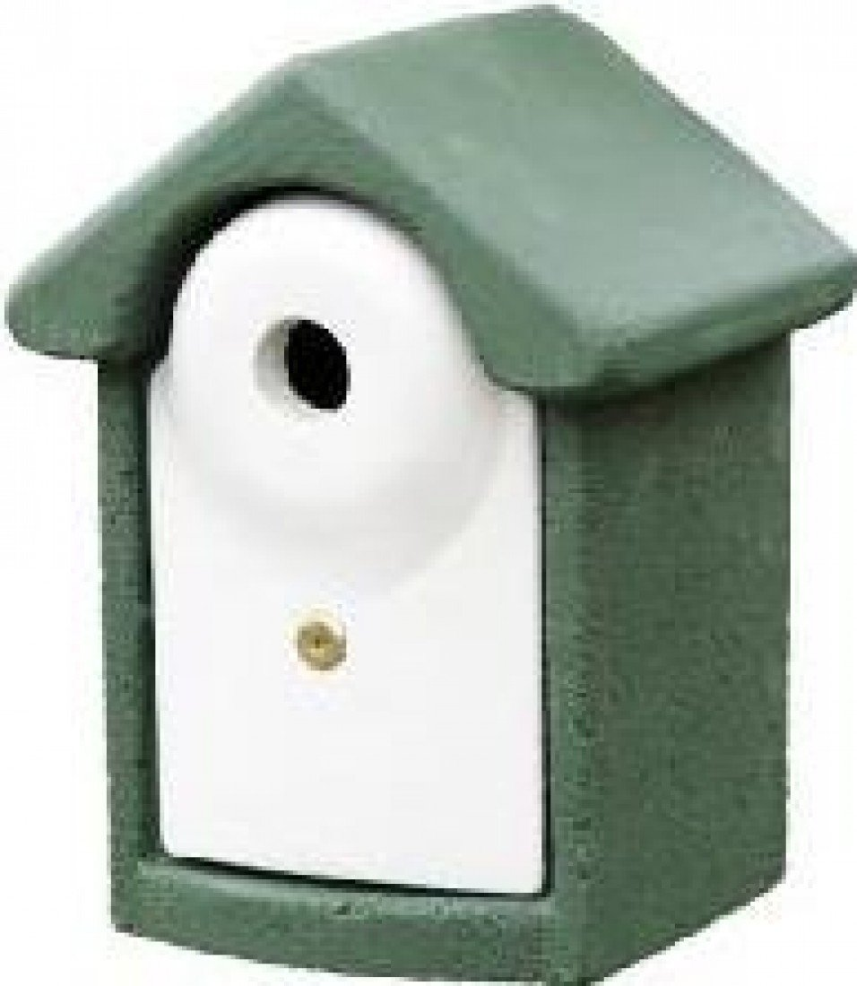 CJ Woodstone Nest Box Green 28mm (FSC) CJ WILD BIRD FOODS 905970119