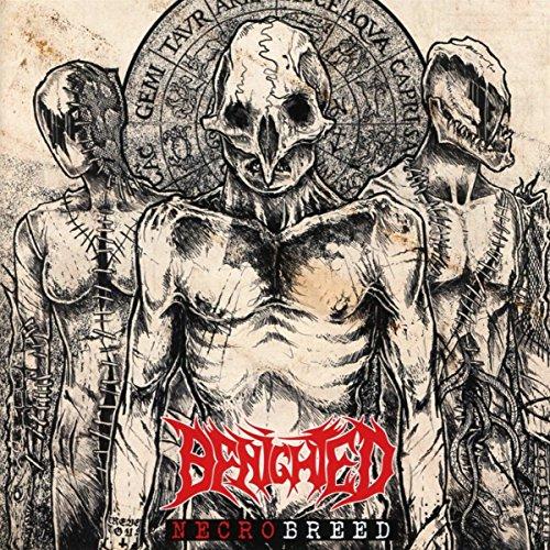 CD : Benighted - Necrobreed (CD)