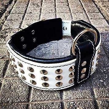 6c42649de353 Bestia collier de chien en cuir. Clouté. fait main. 6,5 cm de large ...