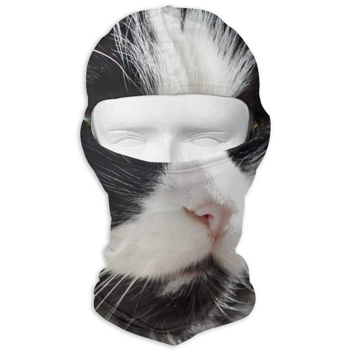 Nifdhkw Upset Cat Ski Motorcycle Balaclava Mask Sunscreen Hat Windproof Cap Multicolor4