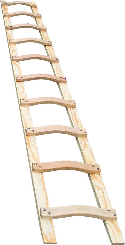Geis & ajos de madera-techo subyacía Head 85116 16 layher 4,5 m layher escalera 4039665016312: Amazon.es: Electrónica