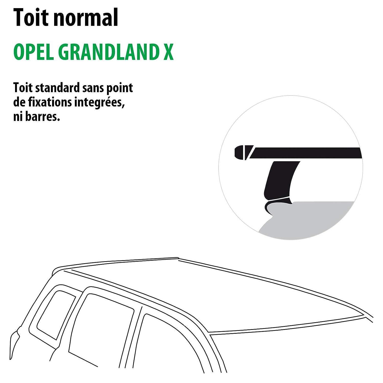 Rameder Pack Barres de Toit Tema pour Opel GRANDLAND X 118786-38031-1-FR