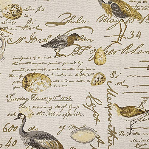 eLuxurySupply Fabric by The Yard - 100% Polyester Upholstery Sewing Fabrics - Birdsong Seamist Pattern