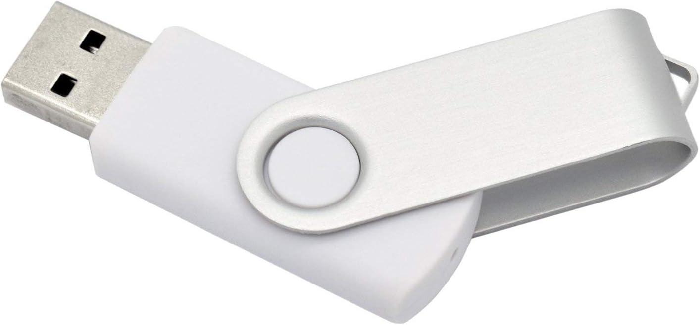 100PCS 2.0//3.0 USB Flash Drive Pen Drive Memory Stick Thumb Stick Pen Black 2.0//4GB, Mix