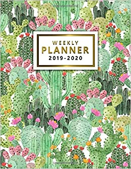 Uf Schedule 2020.2019 2020 Planner Cute Watercolor Succulent Cactus Daily