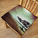 Nalahome Set of 2 Waterproof Cozy Seat Protector Cushion Lonely Tree Scene Accessories College List One of a Kind Machine Washable Silky Satin in Woodsy Burgundy Green Brown Printing Size 22x22inch