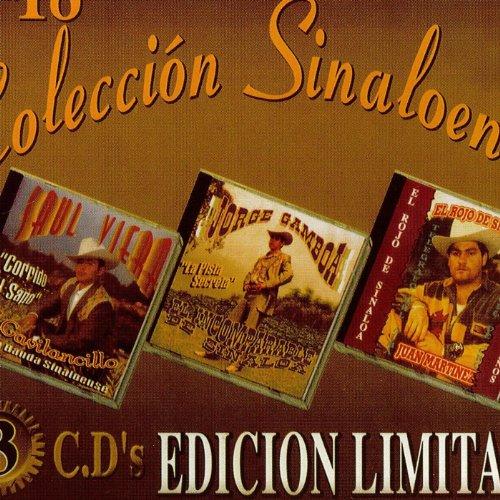 Amazon.com: Saul Viera, Jorge Gamboa, Y El Rojo De Sinaloa Coleccion