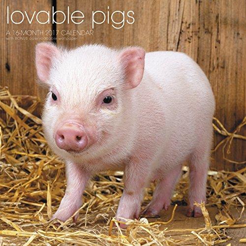 Lovable Pigs Wall Calendar