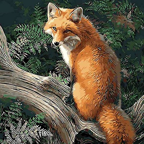 Adarl DIY Oil Painting Paint by Number Kit Image Drawing On Canvas by Hand Coloring Arts Crafts & Sewing New Fox