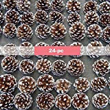 Lanyani 24-pc Natural Snow Pincones with String Pine Cones Hanging Ornaments for Christmas Tree Home Decoration, 2 inches
