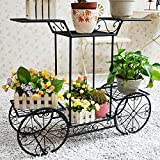 Dazone Metal Cart Flower Rack Display Garden Tree Home Decor Patio Plant Stand Holder Review