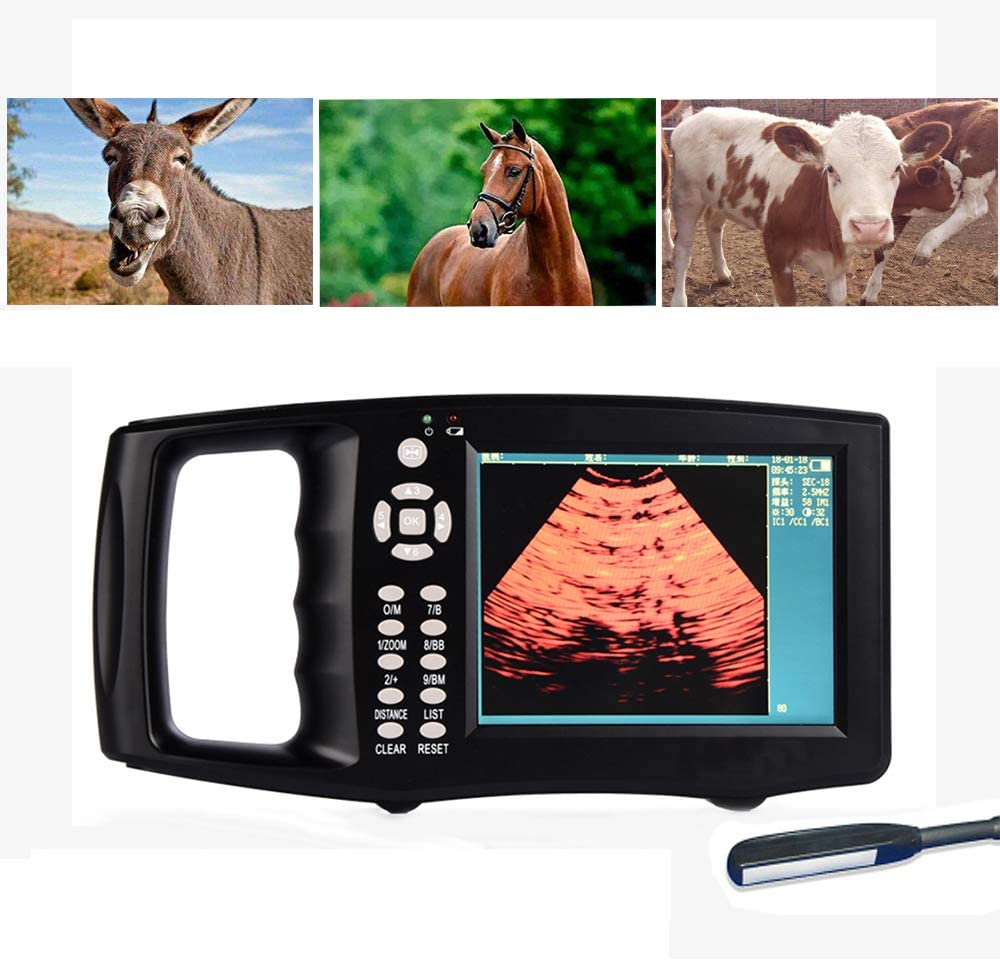 MMUY-1 Escáner De Ultrasonido Portátil Veterinario, Máquina De Pruebas De Embarazo HD con 4 Tipos De Pseudo Color Y Pantalla a Color TFT De 5.6 Pulgadas,para Ganado Y Animales