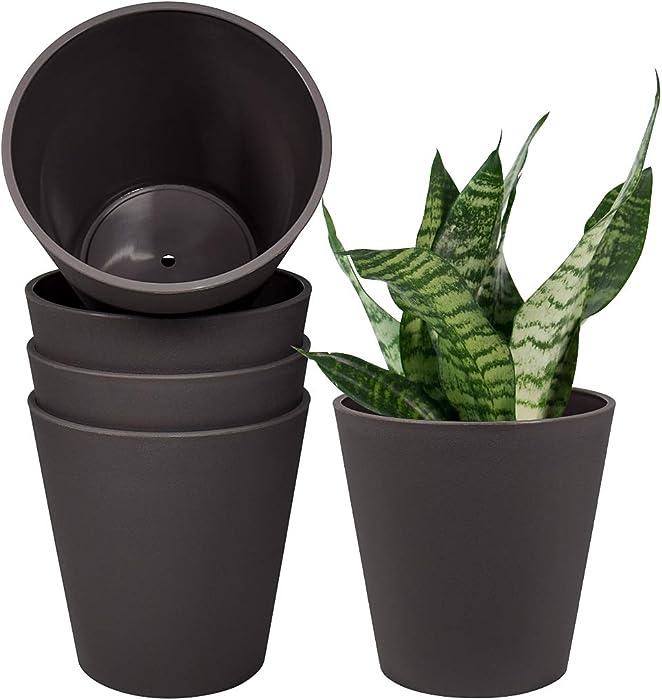 Top 10 Garden Indoor Pot