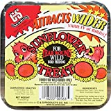 C and S Products CS12563 Sunflower Wild Bird Suet Treat