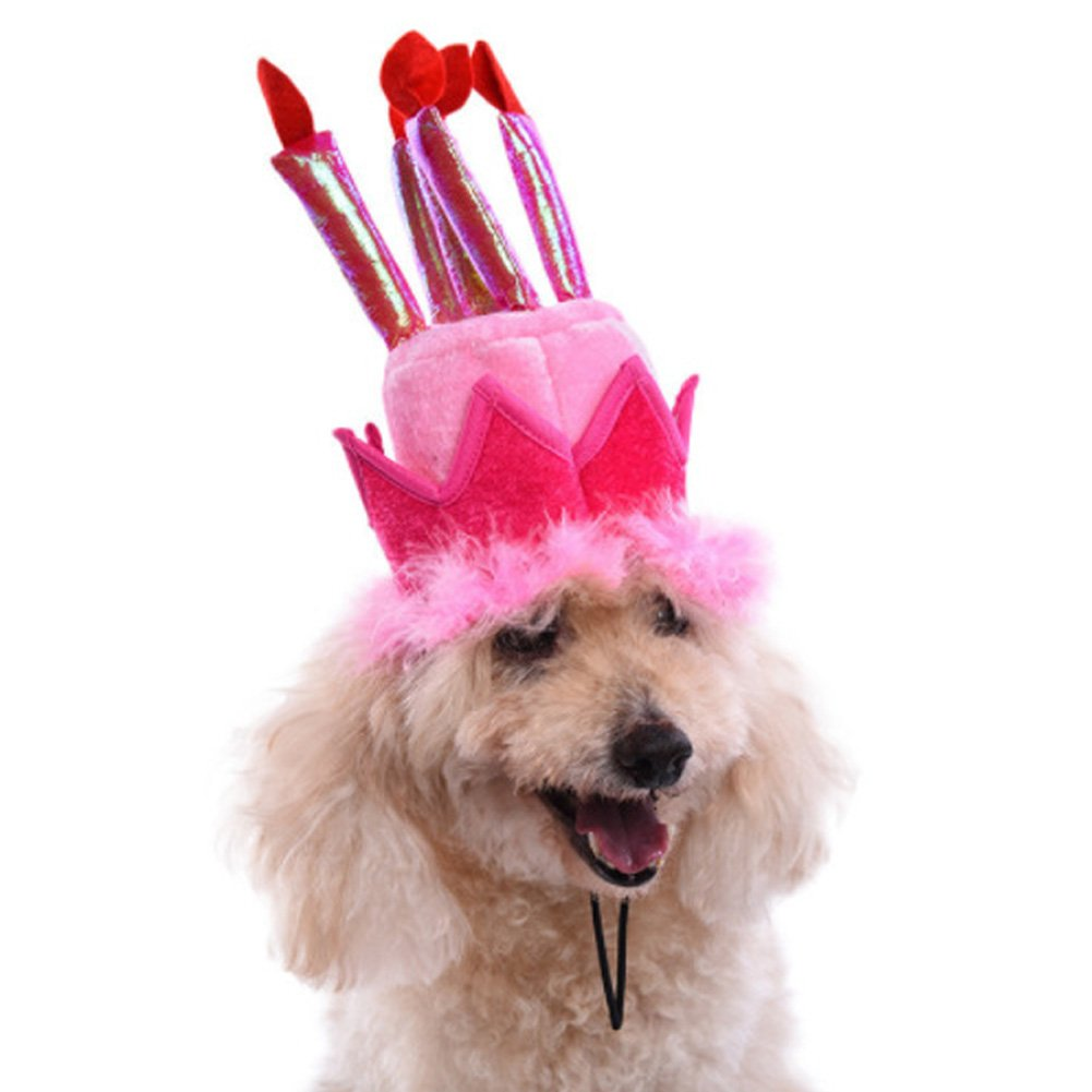 Amazon Ztl Dog Cat Pet Birthday Hat With Cake Candles Design Party Costume Accessory Headwear Supplies