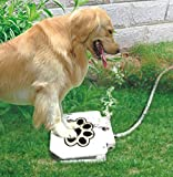 Best Pet Fountains - Piepea Brass Valve Outdoor Dog/Pet Water Fountain, Step Review