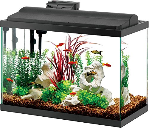 - Aqueon Deluxe LED Aquarium Kit Black 20 Gallon