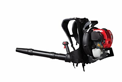 Troy-Bilt TB4BP EC 32cc 4-Cycle Backpack Blower