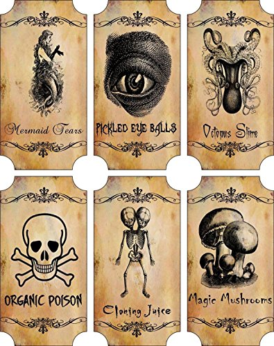 Potion Bottle Sticker Labels Voodoo New Orleans Halloween Pickled Eye Balls Skull, Poison, Mermaid Tears Wine Mardi Gras 6 large bottle label stickers apothecary labels