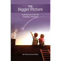 THE BIGGER PICTURE: Explanations from the Company of Heaven (English Edition)