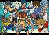 Inazuma Eleven 3: Sekai e no Chousen!! Bomber [Japan Import]