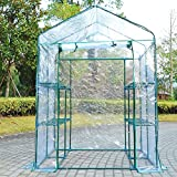 Portable Walk In Greenhouse 5' x 5' x 6'' Flower Shelves Outdoor Garden Plant With Ebook