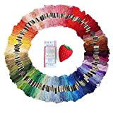 Sinsun 150 Skeins Rainbow Color Cross Stitch Floss - Soft Cotton - Multi ...