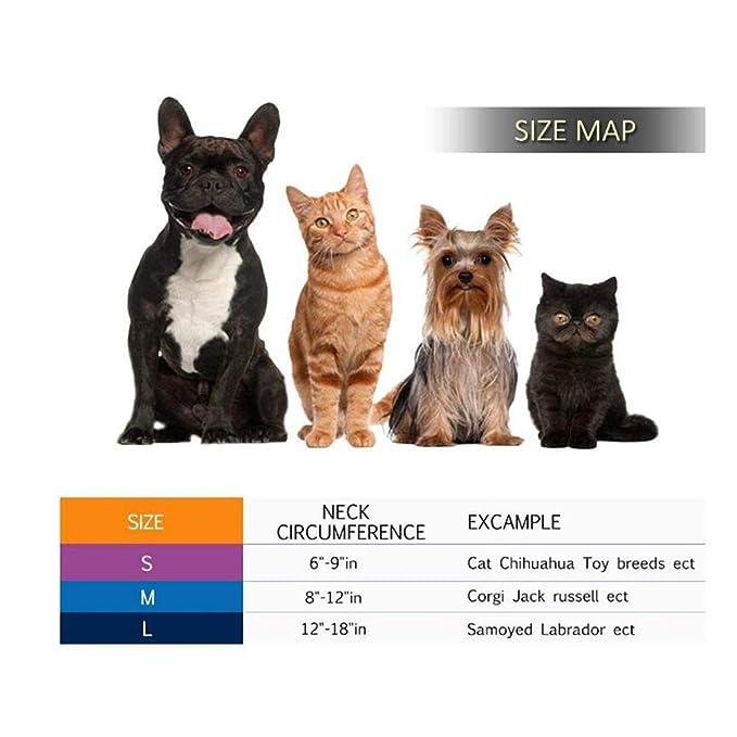 Petyoung Collar Hinchable para Perros y Gatos, Cuello de recuperación Suave para Mascotas con Hebilla Ajustable, Ideal para la recuperación de cirugía ...
