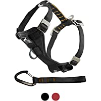 Kurgo Dog Harness   Pet Walking Harness   Car Harness for Dogs   Front D-Ring for No Pull Training   Includes Dog Seat Belt Tether   Tru-Fit Smart Harness   For Small, Medium, & Large Dogs