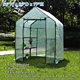 Deluxe Green House 56' W x 56' D x 77' H,Walk in Outdoor Plant Gardening Greenhouse,3 Tiers 6 Shelves