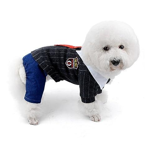 Zunea - Abrigo de invierno para perros pequeños, forro polar ...