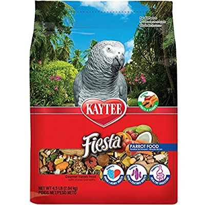 Kaytee Fiesta Bird Food for Parrots by Central Pet Manufacturing
