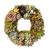 Danmu Rustic Iron Wire Wreath Frame for Succulent Iron Hanging Planter Plant Holder (Plants Are Not Included) (Style 2)