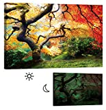 LightFairy Glow in the Dark Canvas Painting - Stretched and Framed Giclee Wall Art Print - Trees Forest Outdoor Red Maple - Master Bedroom Living Room Decor - 6 Hours Glow - 46 x 32 inch